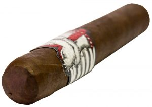 Blind Cigar Review: Asylum | Straight Jacket Robusto