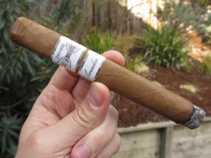 Quick Cigar Review: Iconic Leaf | Recluse Amadeus Toro