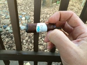 Blind Cigar Review: Dunhill | 1907 Robusto